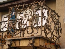 balkon pnącza winogron (3)